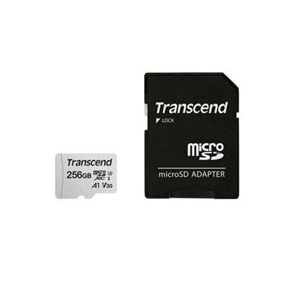 Slika Memorijska kartica SD MICRO 256GB HC Class UHS-I U3 A1 + ad 300S TS